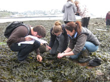 Dr Ceri Lewis teaching on a field class