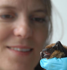 Dr Fiona Mathews with a bat