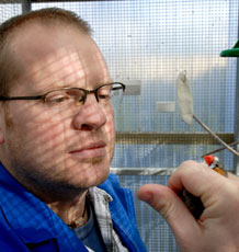 Dr Sasha Dall in the aviary with a zebra finch