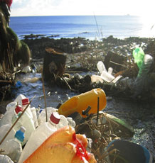 Plastic bottles polluting the coastline