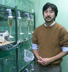 Dr Tetsu Kudoh in the aquarium
